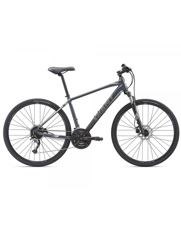 Giant Roam 2 Disc Bike 2019 Hybrid, Commuter and Comfort