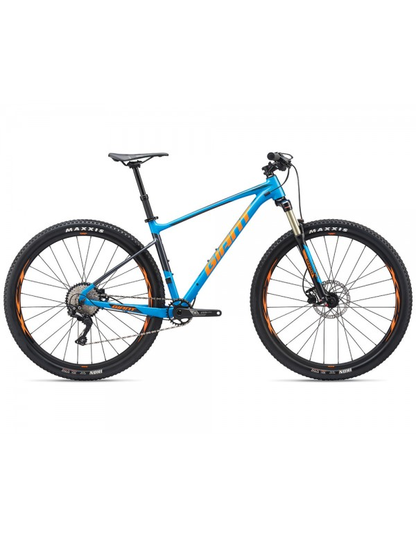 Giant Fathom 29 2 Bike 2019 Mountain
